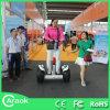 Chariot elétrico do balanço verde da roda do adulto 2 do transporte