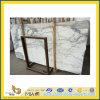 Flooring Decoration를 위한 Arabecato Marble Slab