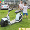 Più nuova bicicletta elettrica brevettata con potere 800W