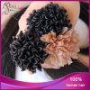 Estensione Pre-Tenuta da adesivo brasiliana dei capelli umani di punta del Virgin all'ingrosso U