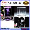 3D Graveur van de Teller van de Laser van het Groene Licht van het Glas van het Kristal Acryl Binnen met FDA van Ce