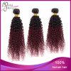 高品質のねじれた巻き毛のバージンのブラジルのOmbreの織り方の毛