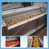 Máquina de lavar da batata de Competetive/máquina de lavar da fruta/máquina de lavar da cenoura