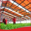 Estufa agricultural de Hanergy 30kw picovolt com sistema solar para a venda