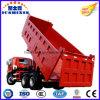 30-40 tonnes de Foton de type de camion- de camion à benne basculante de levage moyen