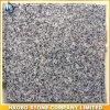 Granito grigio G655 per le mattonelle di pavimentazione, lastre, controsoffitti, scale