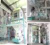 高出力の家禽の飼料工場装置