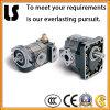 Hydraulisches Motor, Electric Hydraulic Gear Oil Pump für Sale