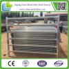 Cattle를 위한 최신 Dipped Galvanized Livestock Yard Panels