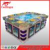 كازينو سمكة تصويب لعب قمار آلات يقامر برمجيّة