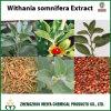 酸化防止剤のためのAshwagandha /Withania SomniferaのエキスからのWithanolides