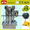 Macchina verde oliva della pressa di petrolio idraulico del sesamo automatico
