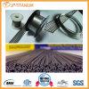 Alto rendimiento y alambres Titanium moderados Roces del precio Grade2 ASTM B863