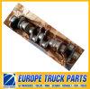 51021010673 de Delen van de Vrachtwagen van de Motor D2066 van de trapas voor Benz van Mercedes