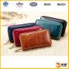 최신 판매에 있는 Zipper Leather Kay Bag Eco-Friendly 우아한 숙녀