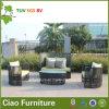 Sofà esterno di Ratan del rattan del giardino di vimini unico moderno della mobilia (G-05)