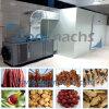 Dessiccateur de tunnel de pompe à chaleur pour le séchage/déshydratation de poissons de viande de légumes fruits