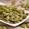 Noccioli cinesi dei semi di zucca con l'aa superiore