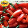 Colore rosso Gojiberry dell'alimento biologico della nespola
