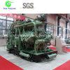 W pulsa el compresor de gas natural comprimido CNG para las varias aplicaciones