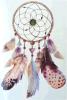 Tatuaje temporal del arte de la etiqueta engomada del tatuaje de la pluma del grano de Dreamcatcher