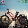 500W 리튬 건전지 자전거 뚱뚱한 타이어 화물 전기 세발자전거