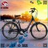 合金フレーム250Wの安い電気市道の自転車