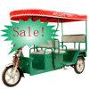Alta qualidade Electric Passenger Rickshaw em Promotion (DCQ300K-02L)
