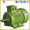 130 kilovatios motor de inducción de la CA de la jaula de ardilla de 3 fases