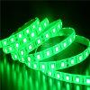 Luz de tira flexível opcional do diodo emissor de luz SMD5050 da cor verde de Epistar