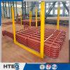 Superheater&Reheater pour l'échangeur de chaleur industriel de la Chine avec le bon prix