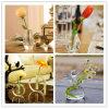 Vase pastoral moderne à verre cristal de décoration de mode de modèle
