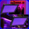 luz UV do painel do diodo emissor de luz de 192PCS 5mm para a iluminação do efeito (ICON-A007B)