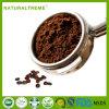 Кофеий нового отборного хорошего дня преимуществ здоровья немедленный