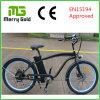 남자를 위한 Front&Rear Tektro 디스크 브레이크 Ebike 바닷가 함 전기 자전거 36V 250W