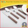 Coltelleria di plastica della maniglia dell'acciaio inossidabile di buona qualità impostata (RYST0229C)