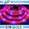 Crescimento Vegetais Crescimento Completo Grow SMD5050 LED Strip Light