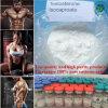 Polvere anabolica dell'ormone di sviluppo del muscolo di Isocaproate del testoterone