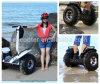 中国New Brand Electric Chariot、SaleのためのCheap Electric Car Price