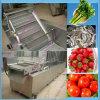 대중적인 가장 싼 자동적인 산업 과일 세탁기