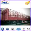 Tri-Welle Multifunktionsflachbett 30-60 Tonnen seitliche Wand-Stange-Schlussteil-