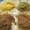 Pianta di produzione della pallina dell'alimentazione del gambero