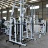 Machine van Smith van de Geschiktheid van de Gymnastiek van Hotsale de Chinese