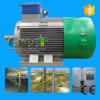 30kw 250rpm 50Hz Pmg Alternator voor Waterkracht wordt gebruikt die