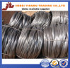 Heißes Dipped Galvanized Iron Wire (G. Ich bügele Draht) Exporter