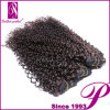 4PCS Lot Jerry Curl Virgin Malaysian Hair Extension Wholesale