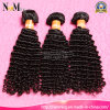 8 - 40 Zoll-Großhandelsjungfrau-brasilianische lockige wellenförmiges Haar-Extension