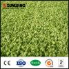 Alfombra artificial de mirada natural imperecedera barata de la hierba