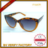 Vidros de Sun de comércio do olho de gato da garantia para as mulheres (F15479)