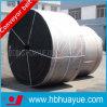 PVC/Pvg schwere Eingabe-vollständiger Kern-feuerverzögerndes Förderband